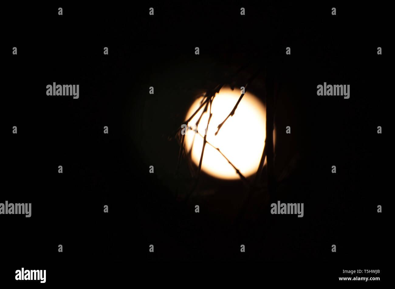 Moonlight encadrée Banque D'Images