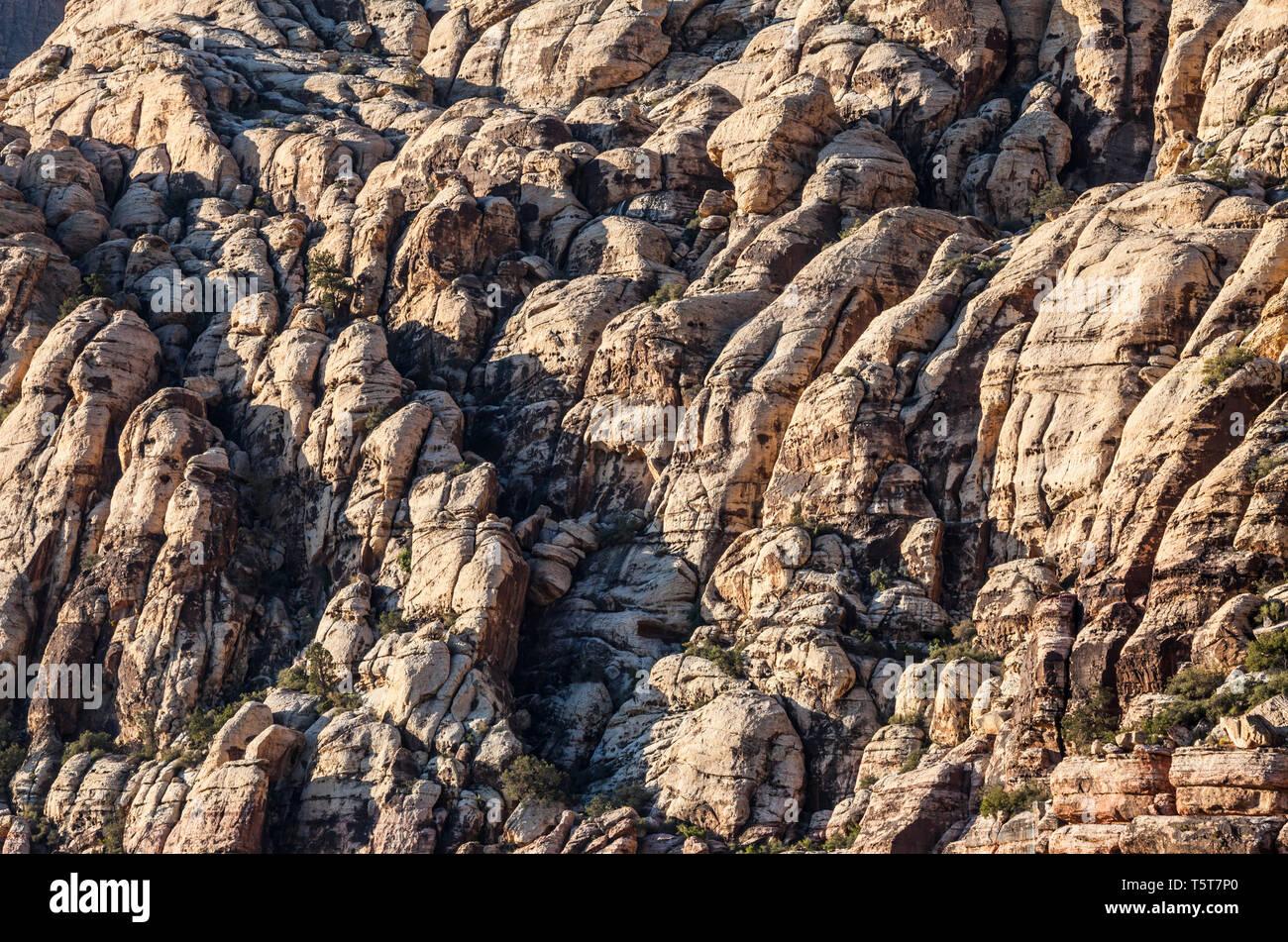 Les falaises de grès, Red Rock Canyon National Conservation Area, Nevada, USA Photo Stock