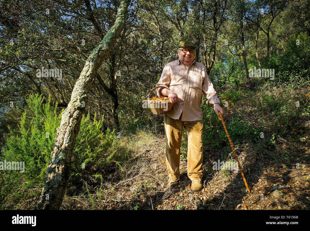 Bolataire, cueilleurs de champignons, Pineda de Mar. Catalunya. Espagne Photo Stock