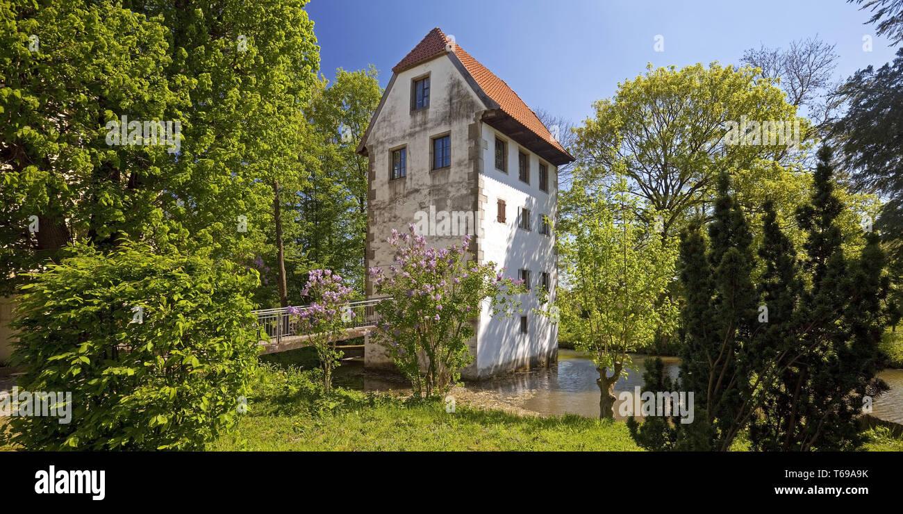 Cour Bispinghof avec fossé et le grenier, Nordwalde, Münster, Rhénanie du Nord-Westphalie, Allemagne Banque D'Images
