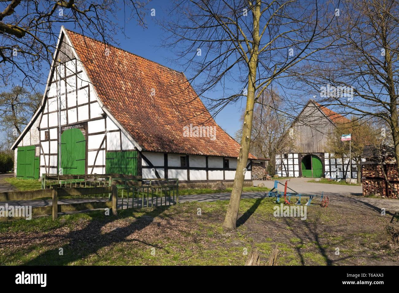 L'agriculture à pans de bois, maisons, Dollberg Ahlen, Münster, Rhénanie du Nord-Westphalie, Allemagne Photo Stock