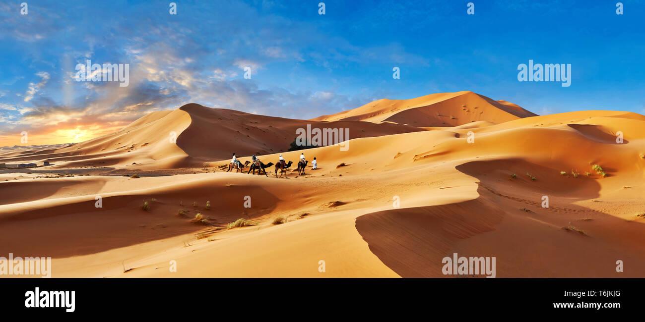 Des promenades en chameaux parmi les dunes de sable du Sahara de l'erg Chebbi, Maroc, Afrique Banque D'Images