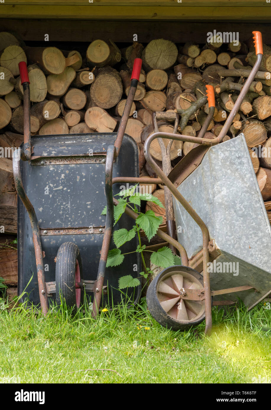 Restaurer Une Vieille Brouette En Bois log wheels photos & log wheels images - alamy