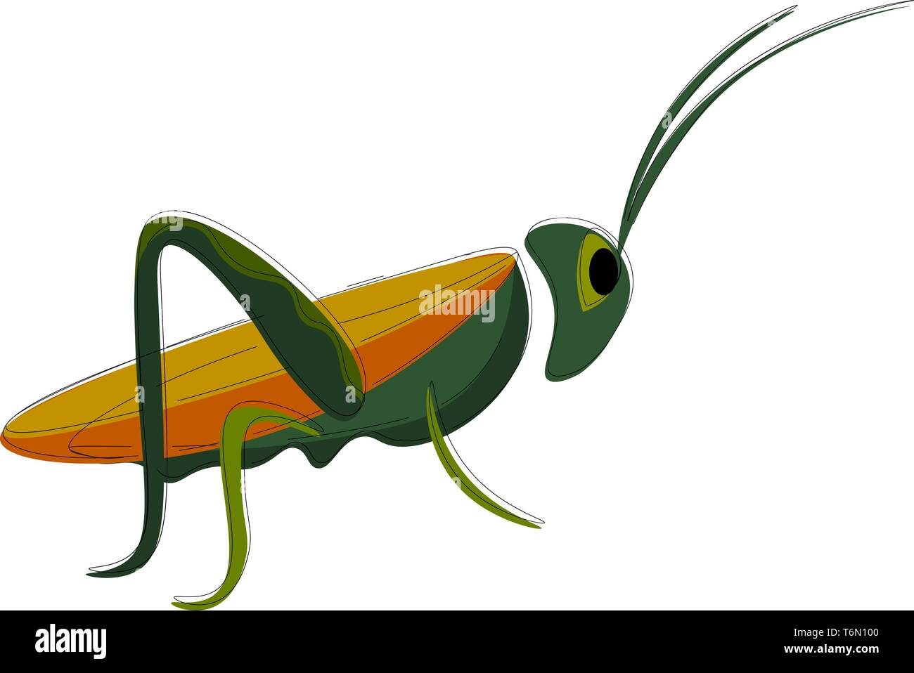 Grasshopper Vector Vectors Photos Grasshopper Vector