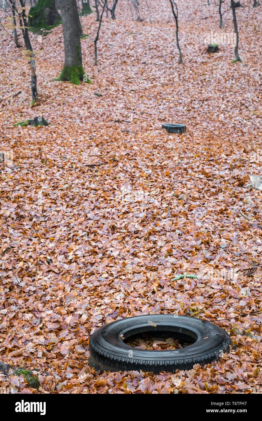 Vieux pneus automobile jeté dans une forêt d'automne, la pollution de l'environnement Photo Stock