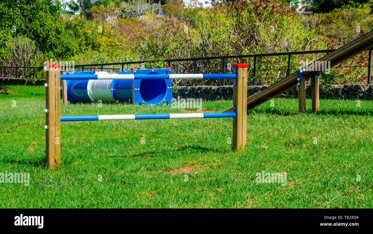 Circuit d'Agilité obstacle pour les chiens avec de l'herbe verte et de la lumière du soleil Photo Stock