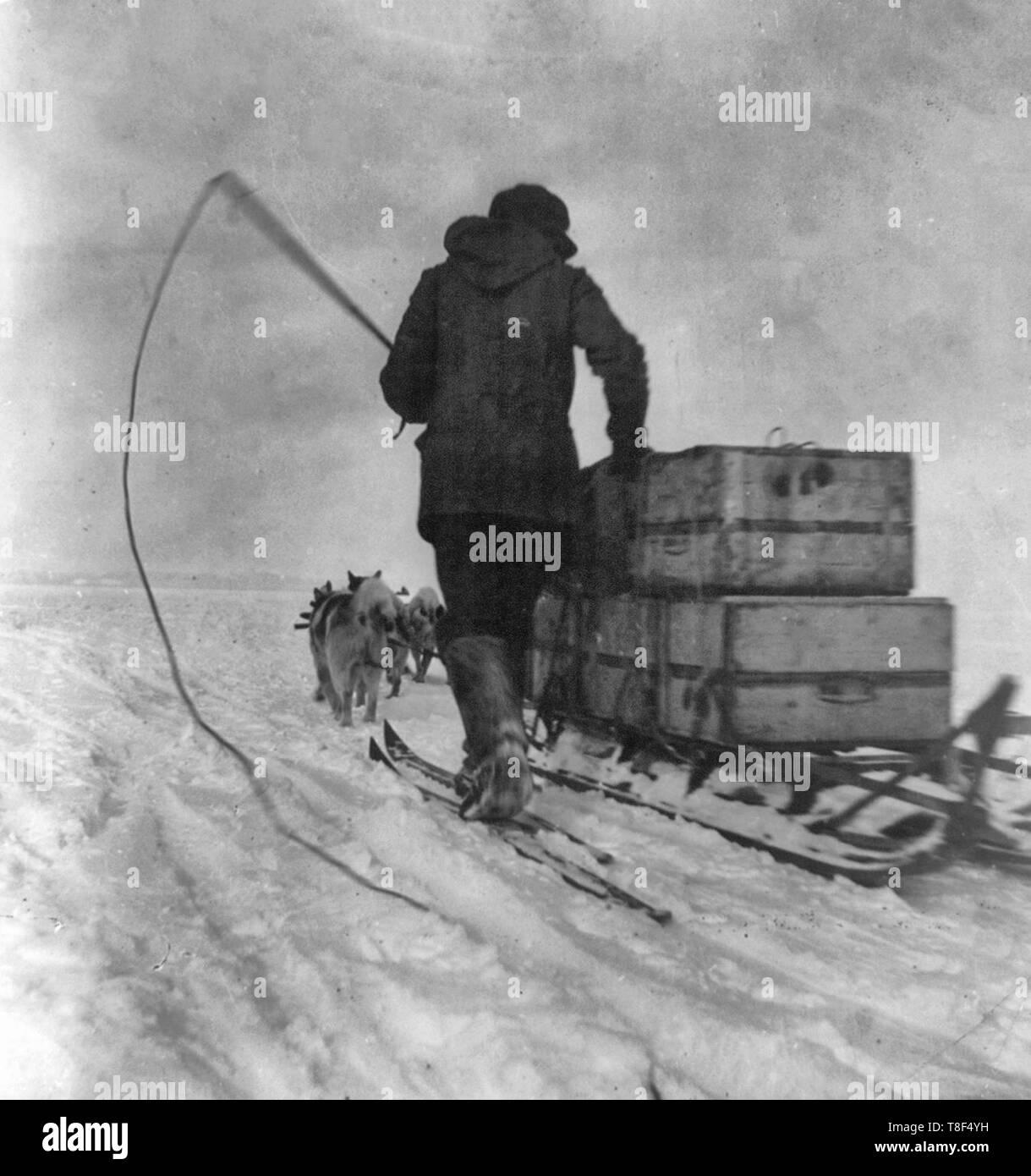 Sur la route du pôle. Une belle photo de l'un des traîneaux étant attiré par son équipe de chiens. L'expédition d'Amundsen, 1911 Banque D'Images