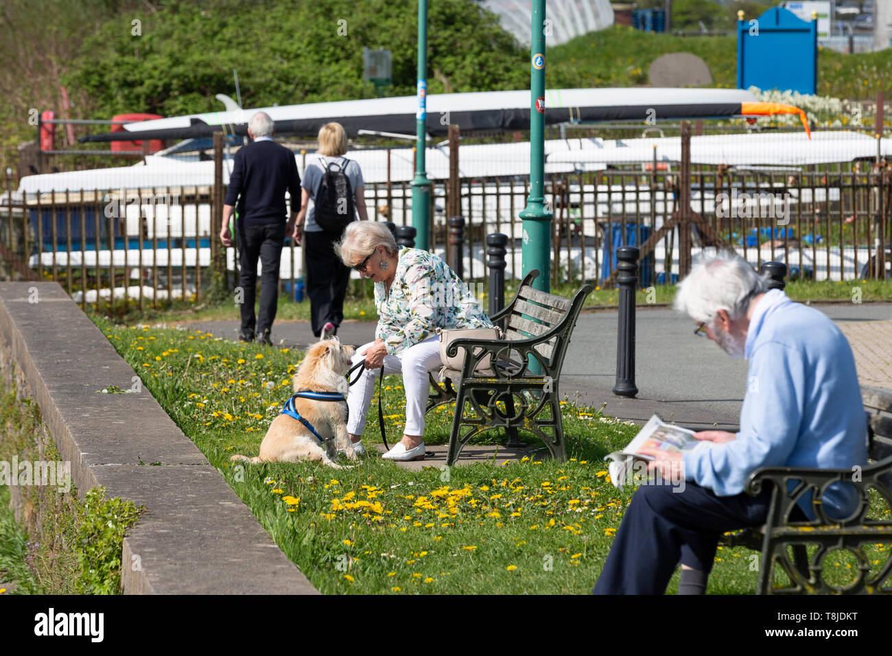 Les hommes et les femmes bénéficiant de temps libre par un beau matin ensoleillé - couple, Man reading newspaper, woman with dog Photo Stock