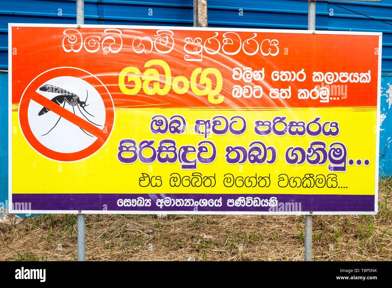 Sri Lanka, province de l'Ouest, Negombo, la prévention contre les moustiques Photo Stock