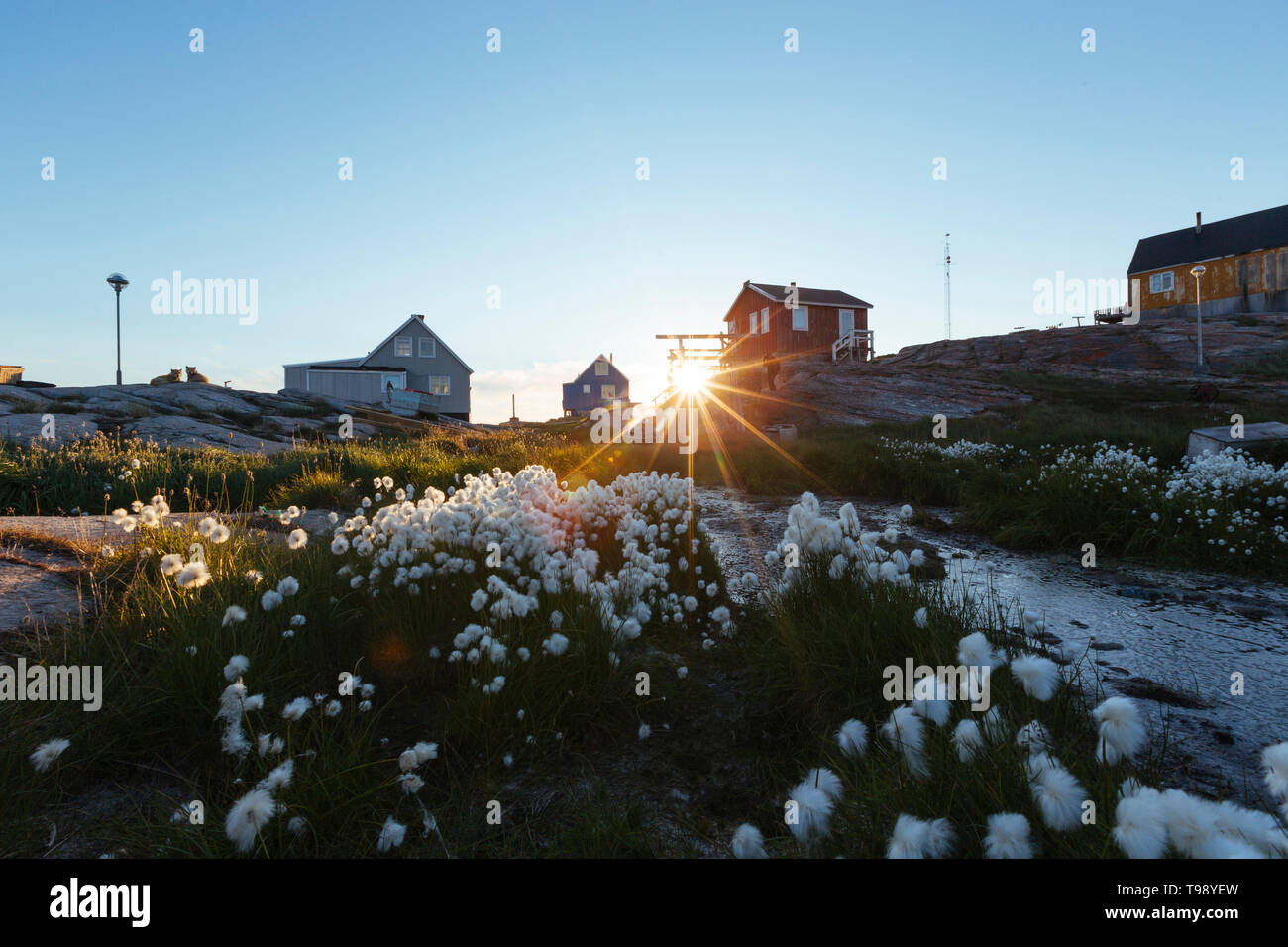 Village de la baie de Disko au Groenland, au milieu de l'été Banque D'Images