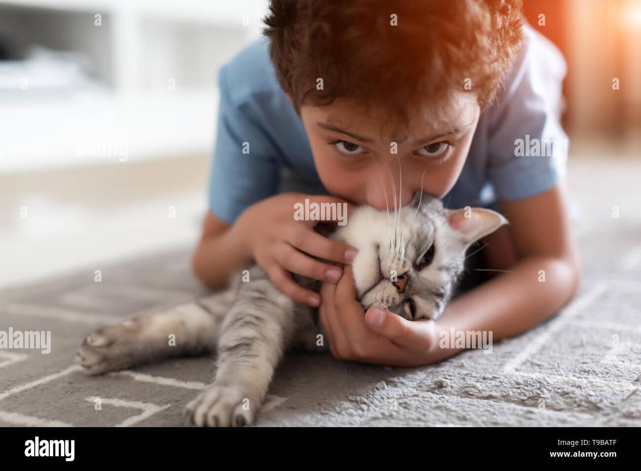 Adorable petit enfant jouant avec British shorthair gris sur un tapis à la maison Banque D'Images