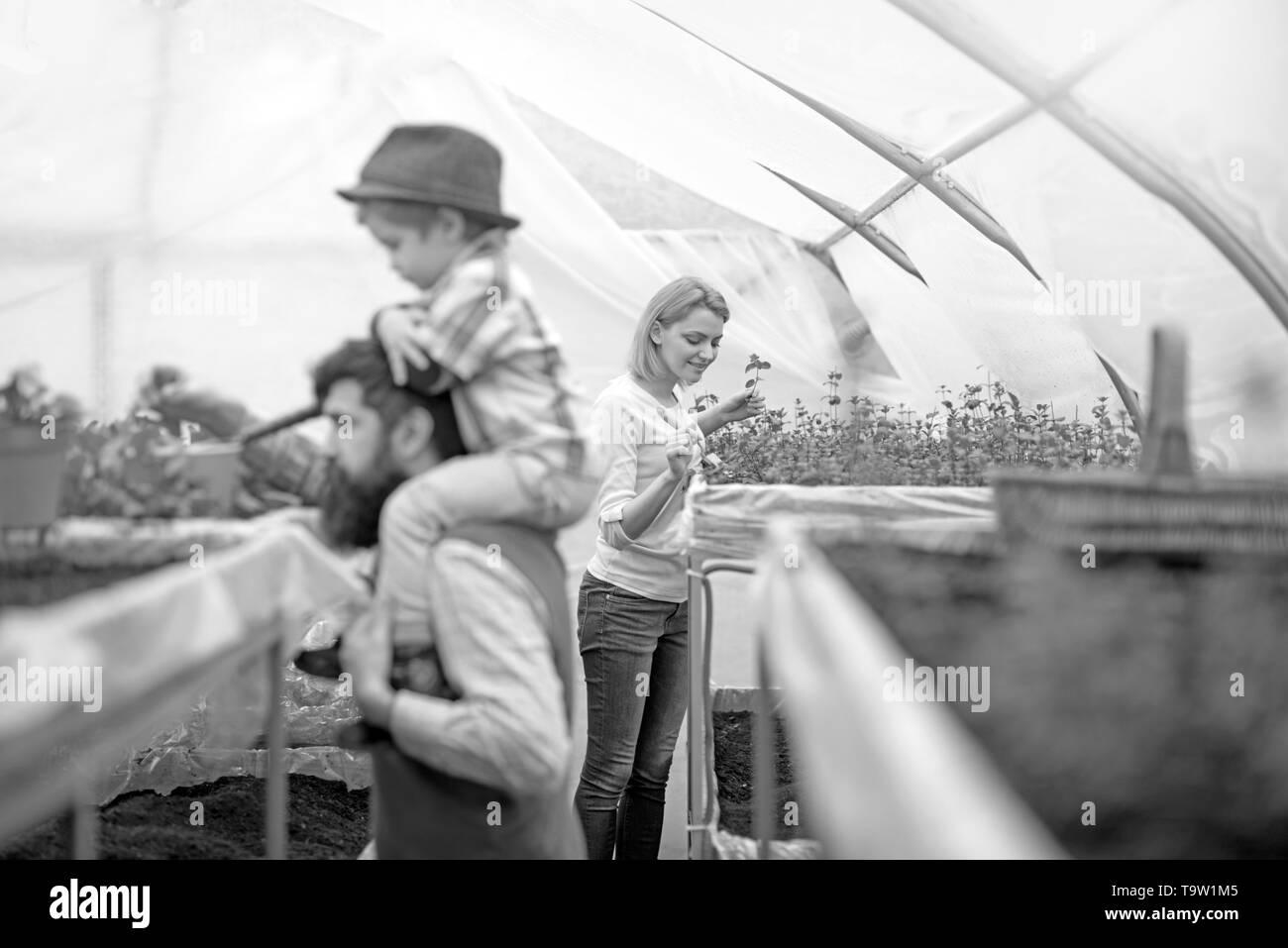 Jolie blonde dame en rose cardigan planter des fleurs avec peu de jardinage chat. Homme barbu vue côté holding kid in hat sur ses épaules en floue Banque D'Images