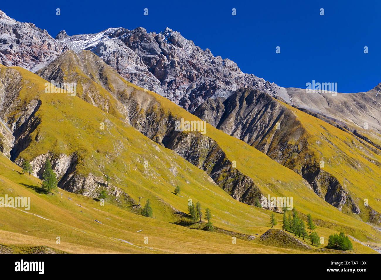 Vue sur le Piz Val Trupchun, Fier, Parc National Suisse, Grisons, Suisse Photo Stock