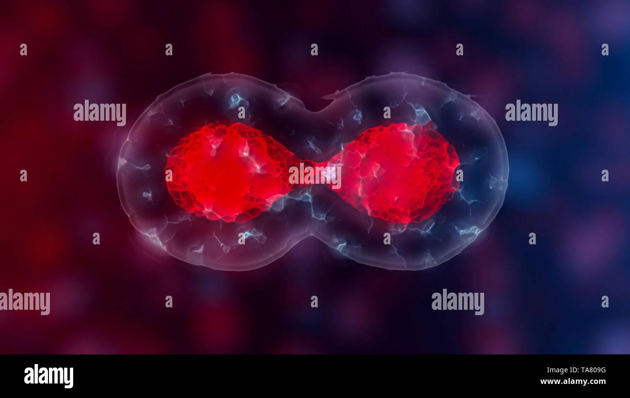 Les cellules souches embryonnaires ou la croissance, la réhabilitation et le traitement des maladies, illustrations 3D Banque D'Images