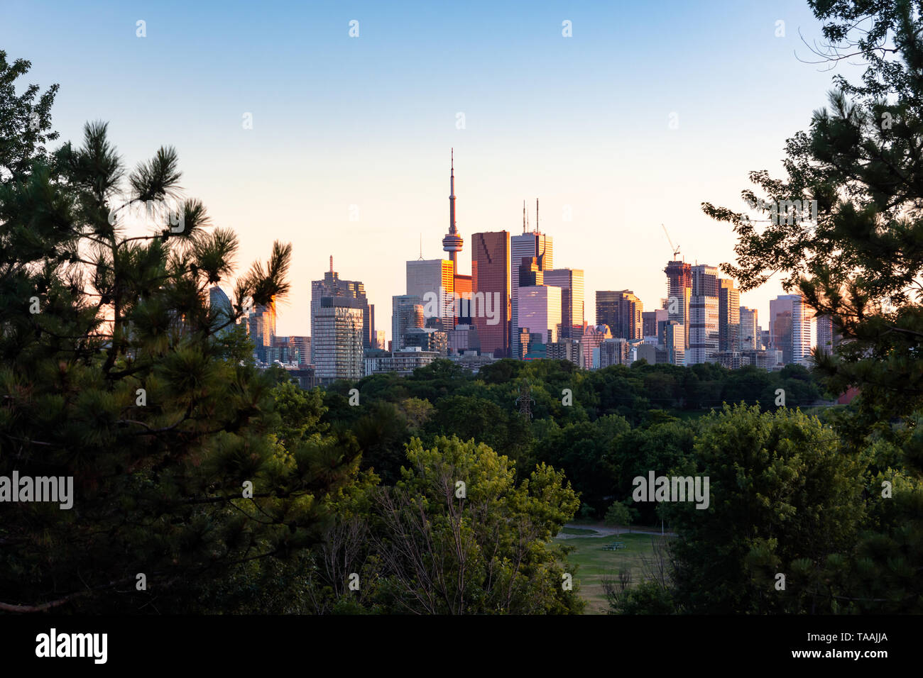 Au cours de l'horizon du centre-ville de Toronto heure golden soirée coucher du soleil vu de Riverdale Park East Banque D'Images