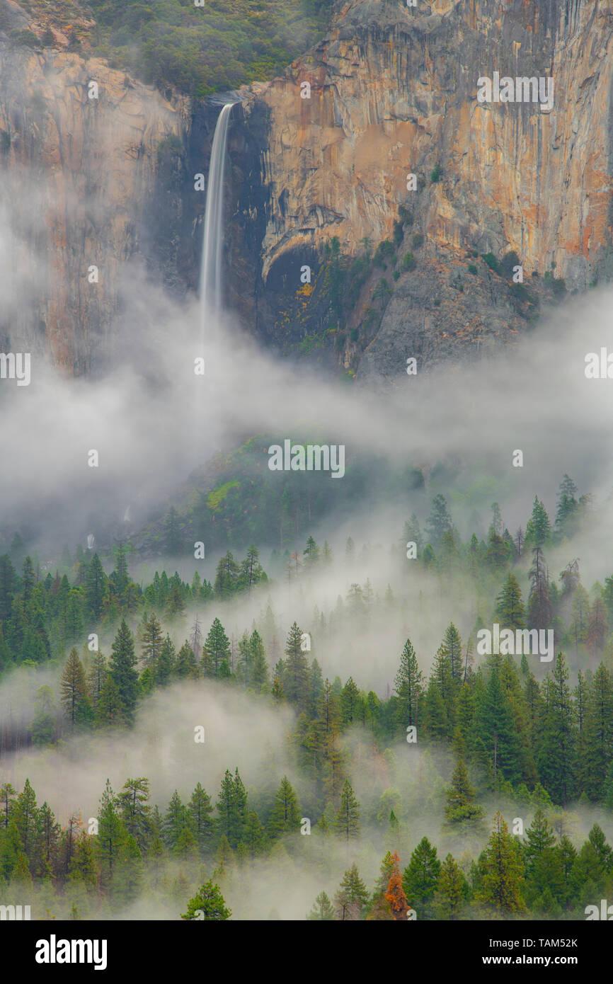 Bridalveil Falls, et le brouillard, Yosemite National Park, California, USA, par Bill Lea/Dembinsky Assoc Photo Banque D'Images