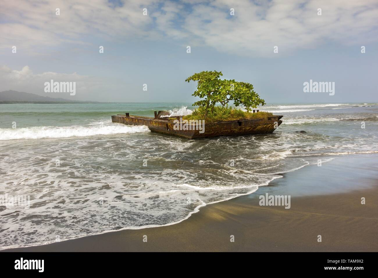 Arbre isolé sur de plus en plus vieux bateau rouillé dock et mer des Caraïbes Tropical Beach Détail dans Ville de Puerto Viejo de Talamanca, Costa Rica Limon Province Photo Stock