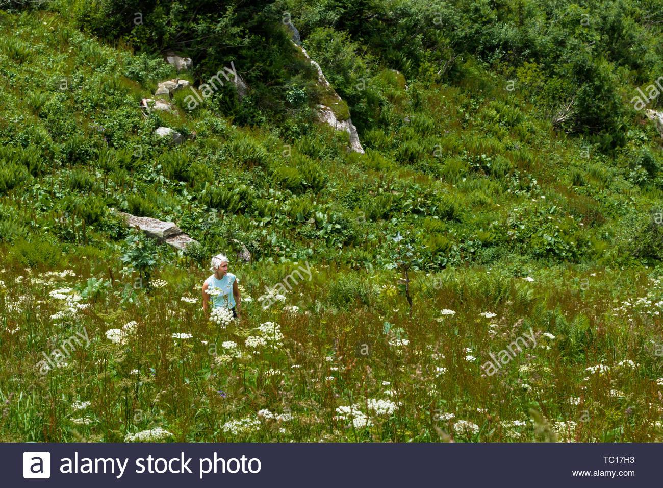 Argentière, France - le 5 juillet 2016: une femme blonde avec de courts cheveux en désordre en manches courtes debout dans une verte et luxuriante prairie de montagne en été Photo Stock