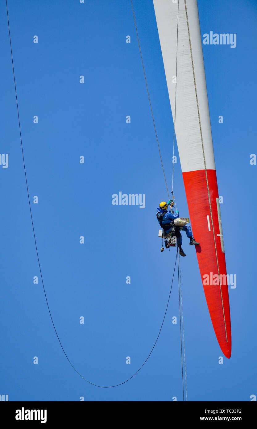 Sieversdorf, Allemagne. Le 05 juin, 2019. Un grimpeur industriels travaille à l'extrémité d'une pale de rotor d'une éolienne. Le technicien, qui est fixé à l'aide de deux cordes holding, les réparations des dommages à cette 44 mètres de long d'une pale de rotor 2 mégawatt (MW) turbine. Crédit: Patrick Pleul/dpa-Zentralbild/ZB/dpa/Alamy Live News Photo Stock
