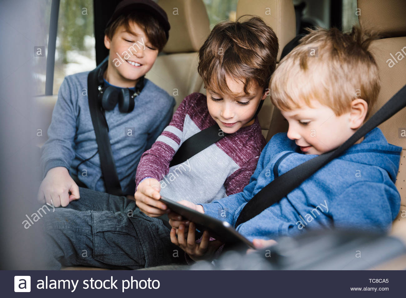 Frères using digital tablet in back seat of car Photo Stock