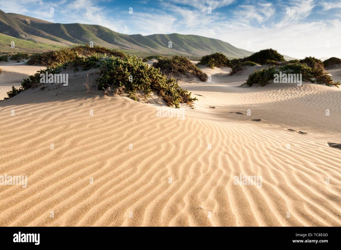 Dispose de dunes de sable de la baie. Famara, Lanzarote. L'Espagne. Banque D'Images