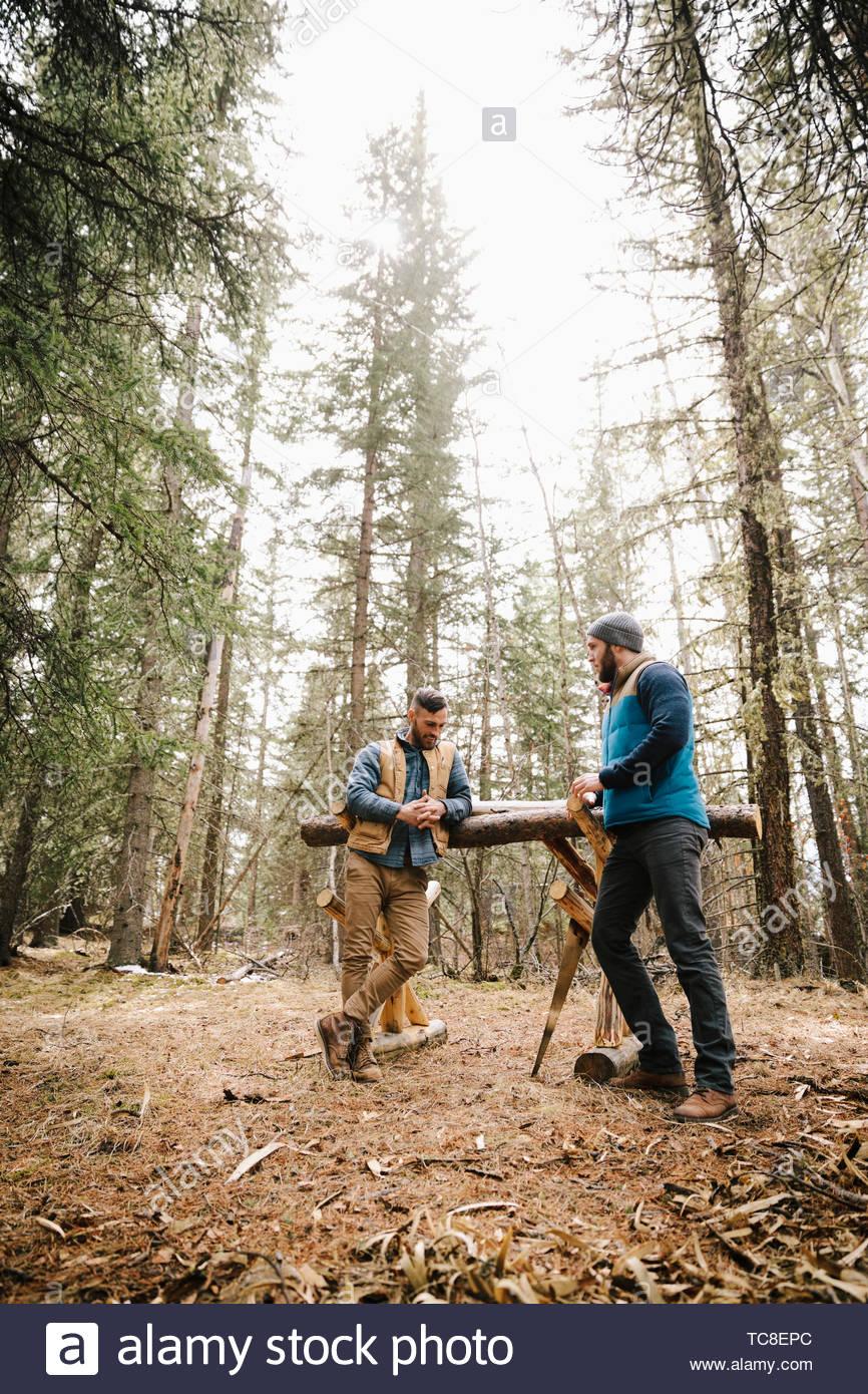 Les hommes la coupe de bois de chauffage dans les bois Photo Stock