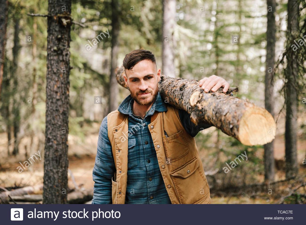 Man tronc de l'arbre pour le bois de chauffage au bois Photo Stock