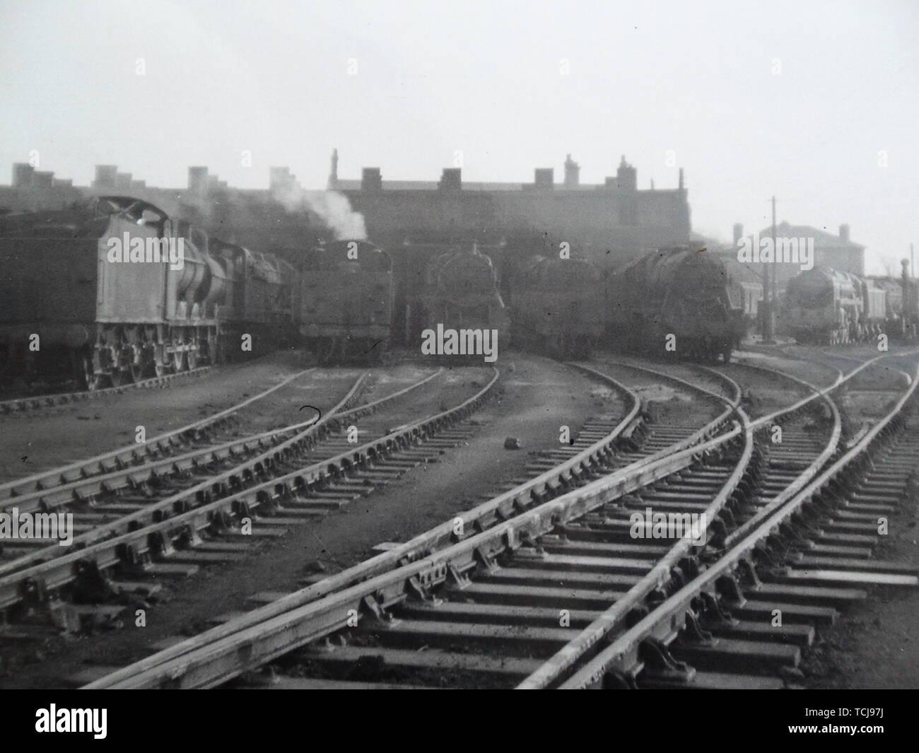 Speed datant de la Shrewsbury