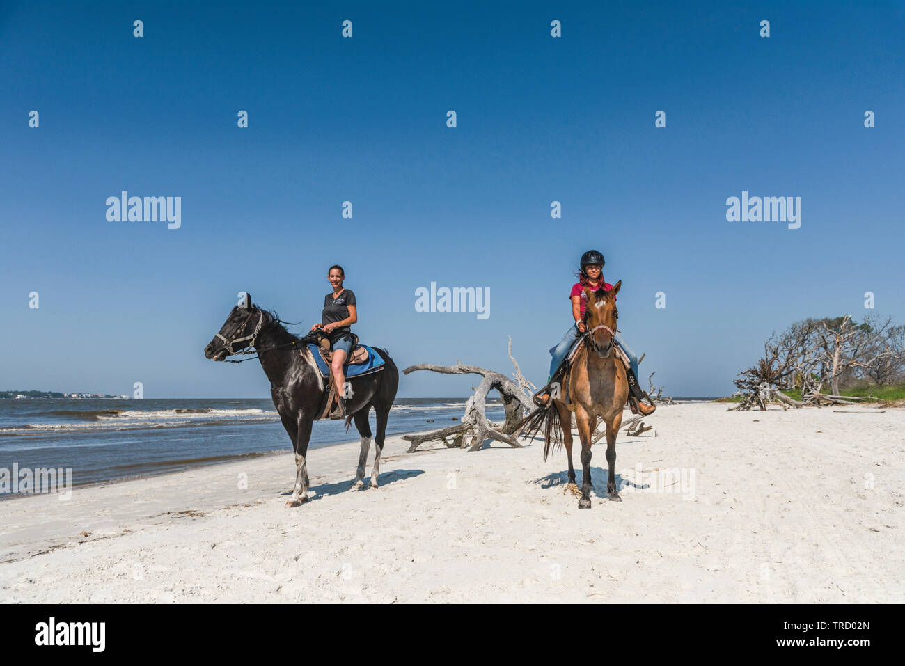 Girl l'équitation sur le rivage de Jekyll Island, Georgia USA Photo Stock