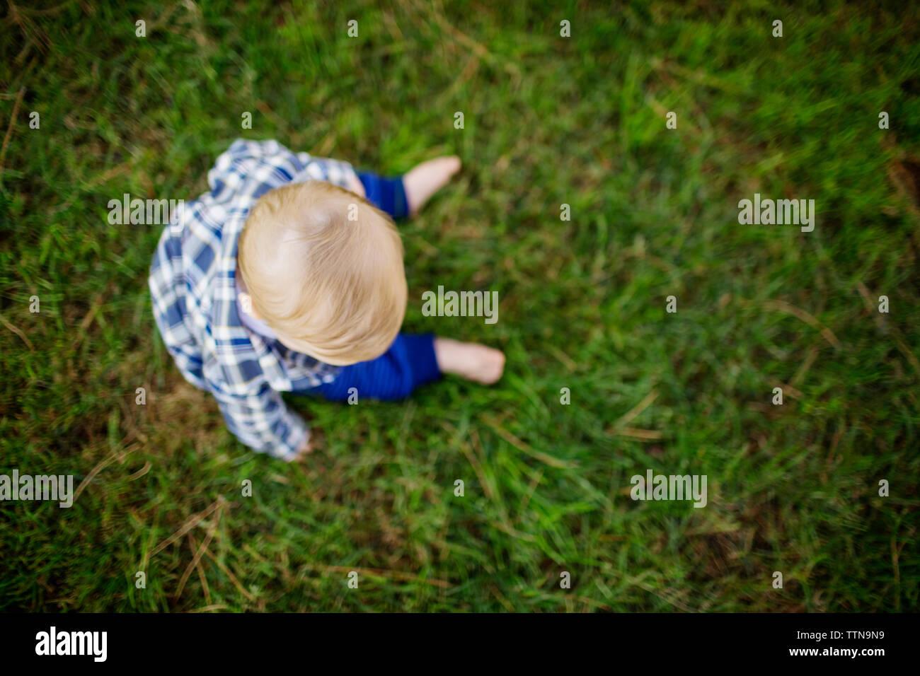 Vue aérienne de baby sitting on grass field at park Banque D'Images