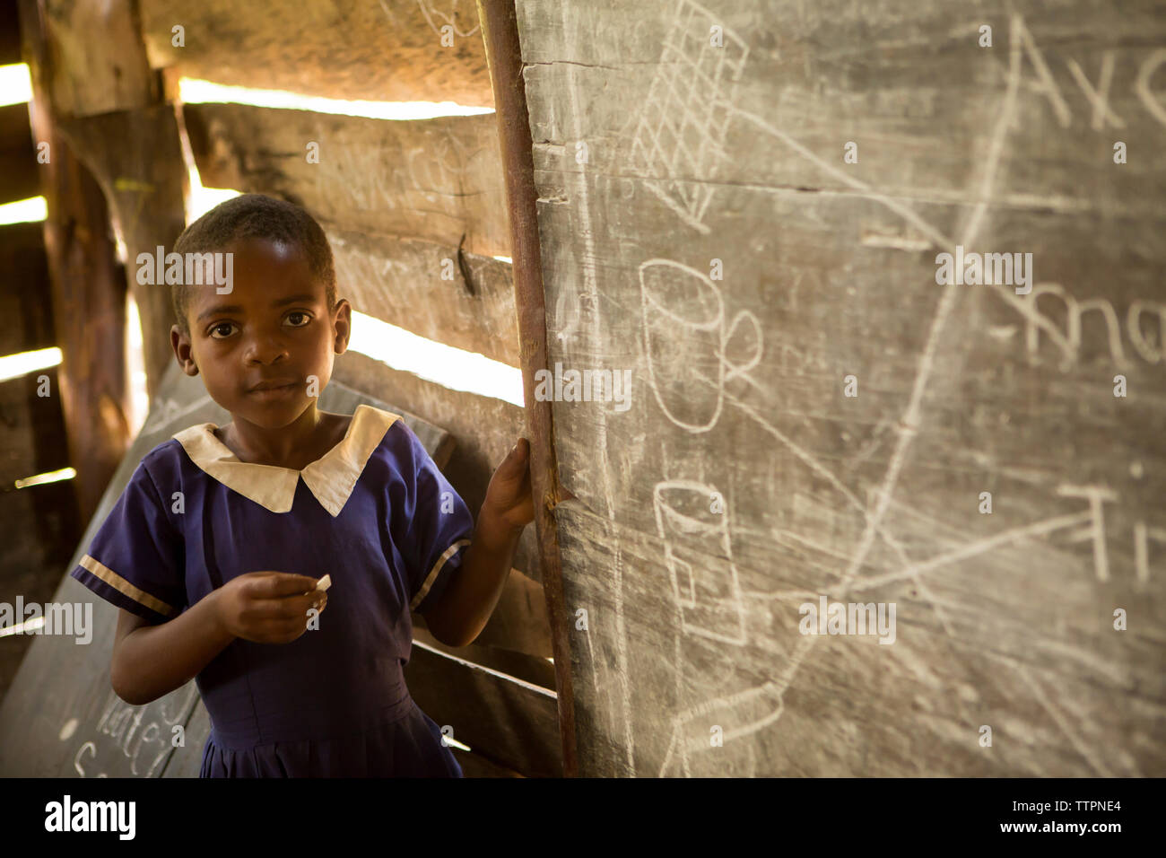 Portrait of Girl standing by blackboard in classroom Banque D'Images