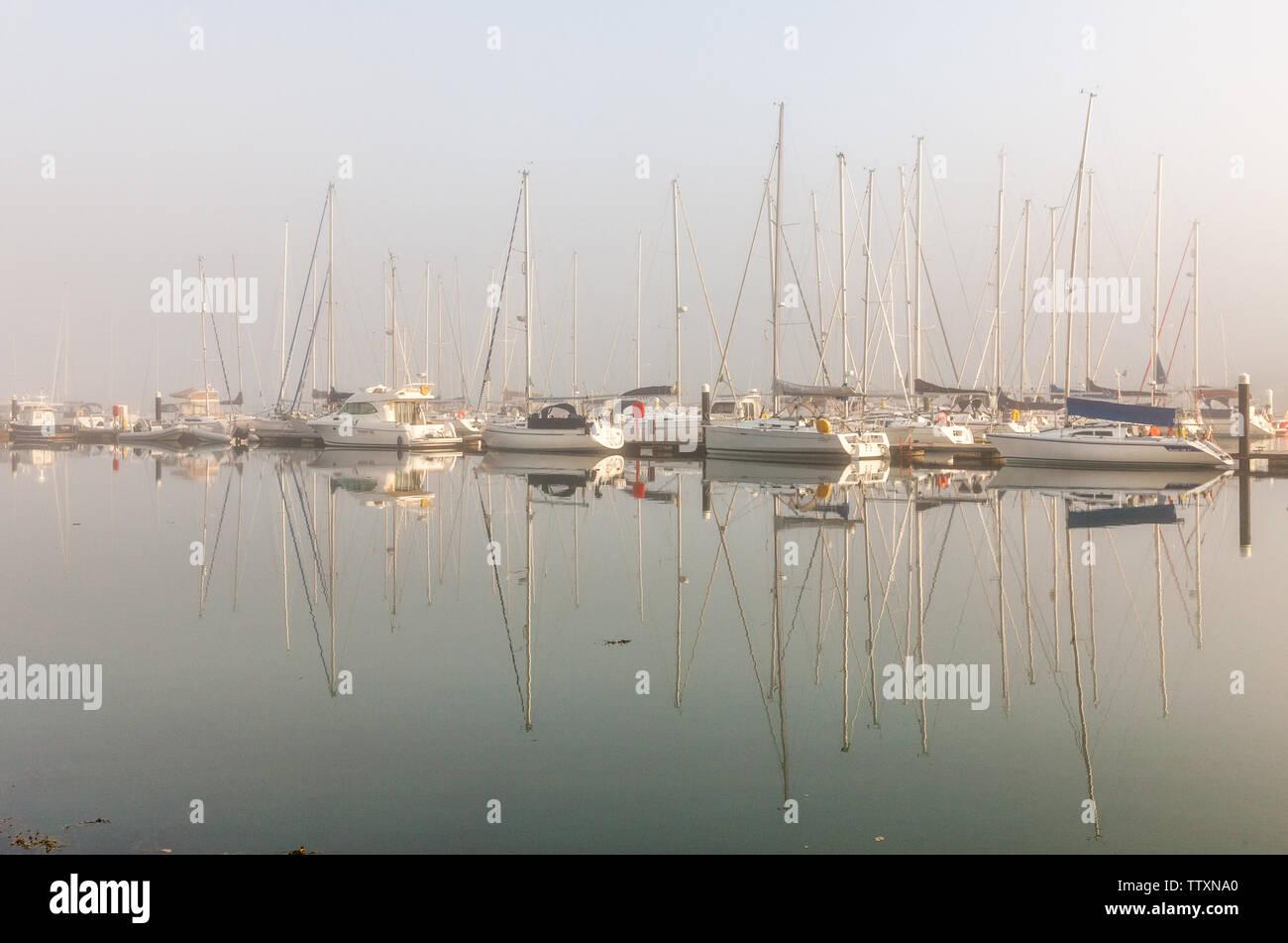 Crosshaven, Cork, Irlande. 18 Juin, 2019. Tôt le matin, le brouillard commence à se dissiper avec le soleil du matin plus de yachts dans le Royal Cork Yacht Club de Crosshaven, co Cork, Irlande. Crédit: David Creedon/Alamy Live News Photo Stock