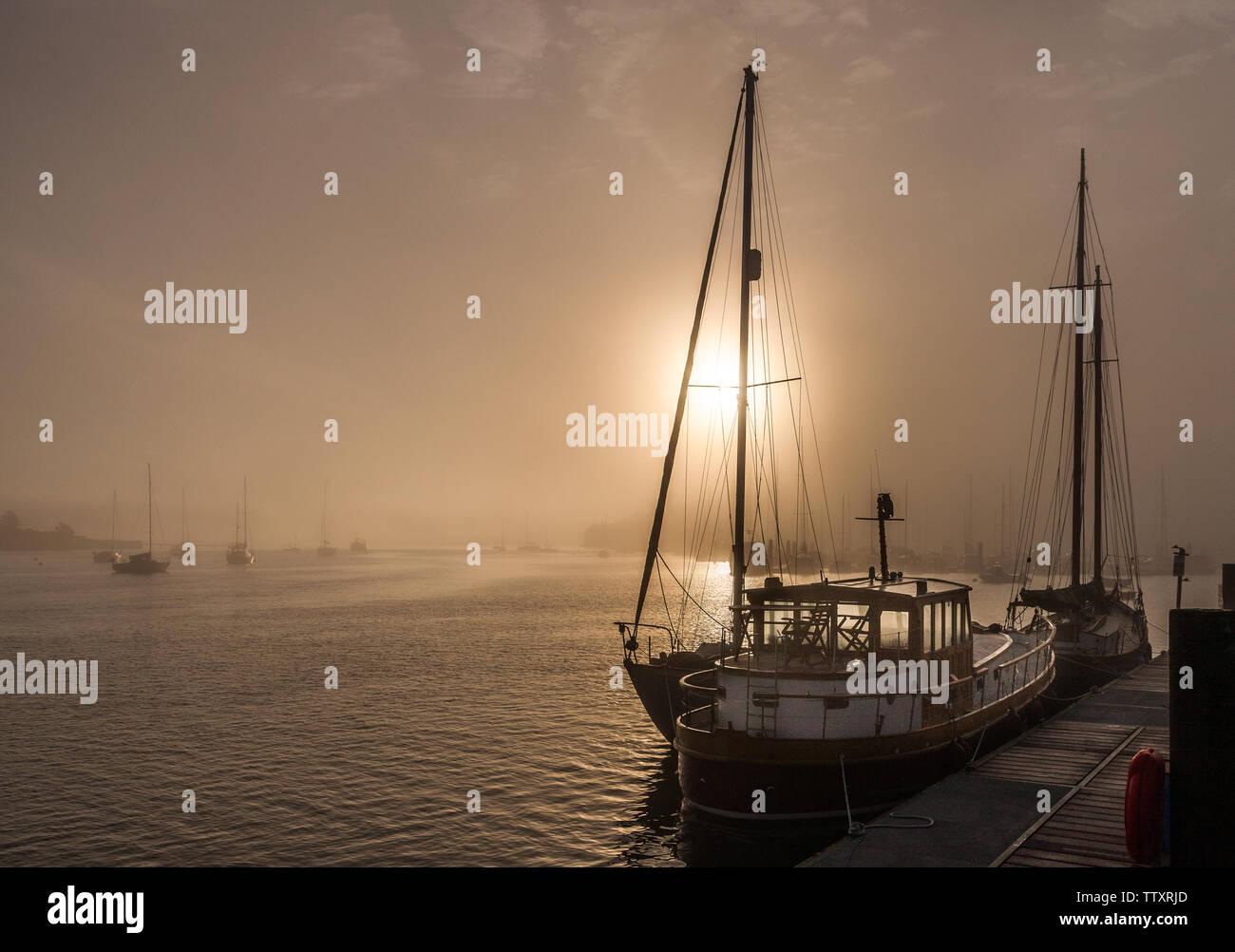 Crosshaven, Cork, Irlande. 18 Juin, 2019. Tôt le matin, le brouillard commence à se dissiper avec le soleil du matin que la cabine cruiser Naom Lua est attaché à l'embarcadère à Crosshaven, co Cork, Irlande. Crédit: David Creedon/Alamy Live News Photo Stock