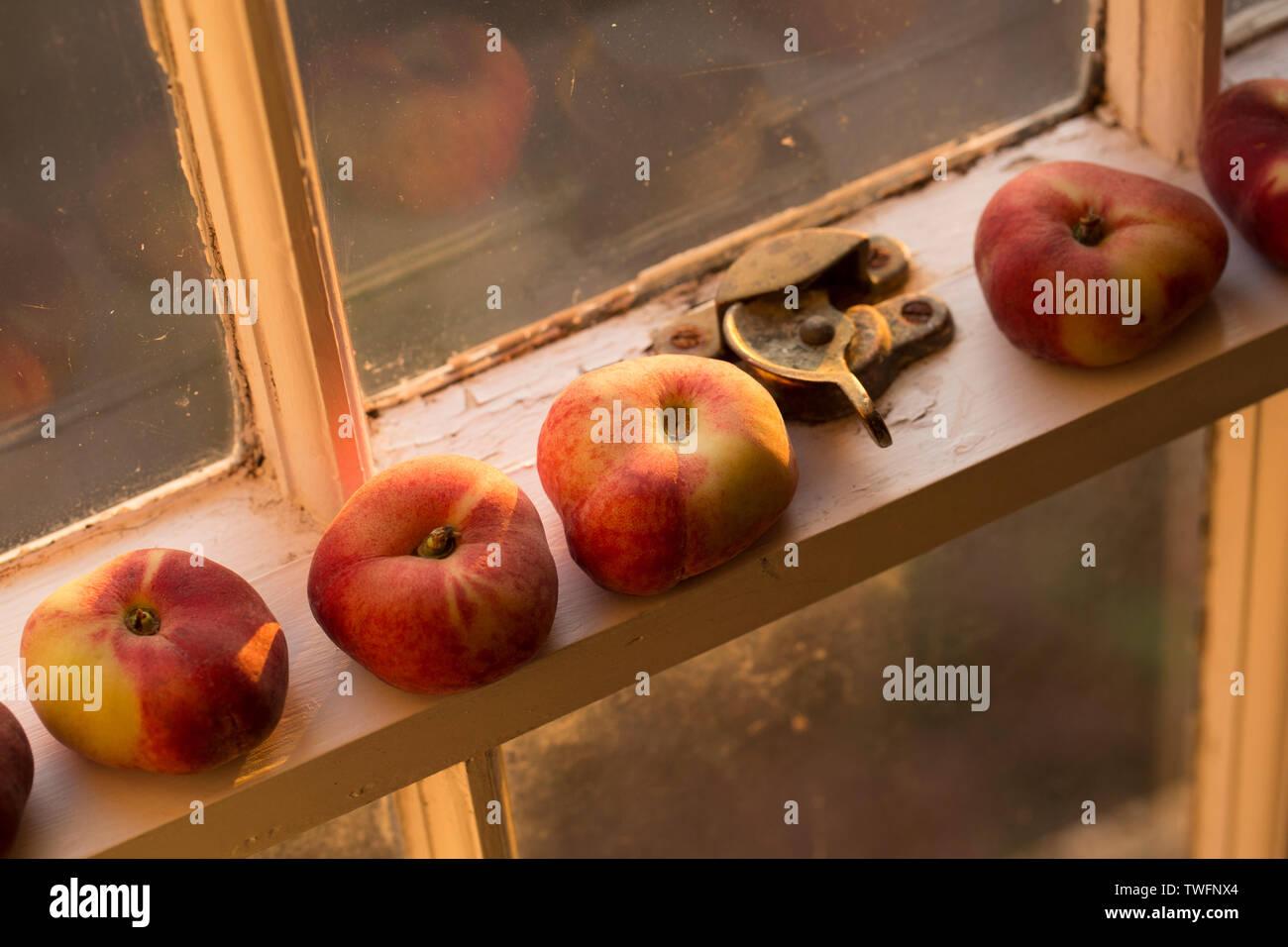 Supermarket Fruit England Photos & Supermarket Fruit England