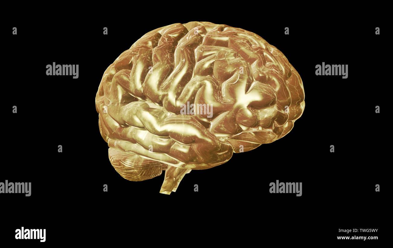 Le rendu 3D du modèle informatique de cerveau humain et l'intelligence artificielle concept Photo Stock