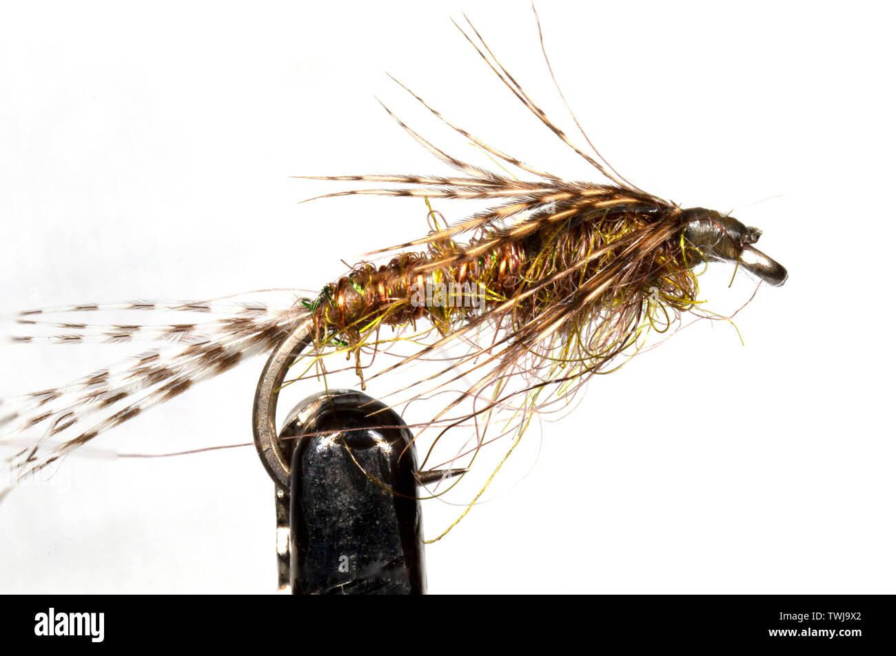 6 hare/'s ear nymphe lièvre nymphe truite mouches ombres mouches de pêche mouches