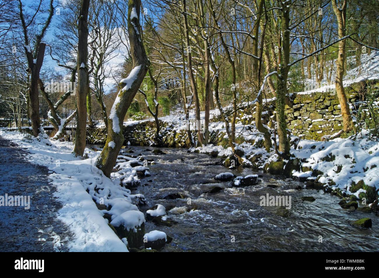 UK,South Yorkshire,Sheffield,Rivelin Rivière en hiver Banque D'Images