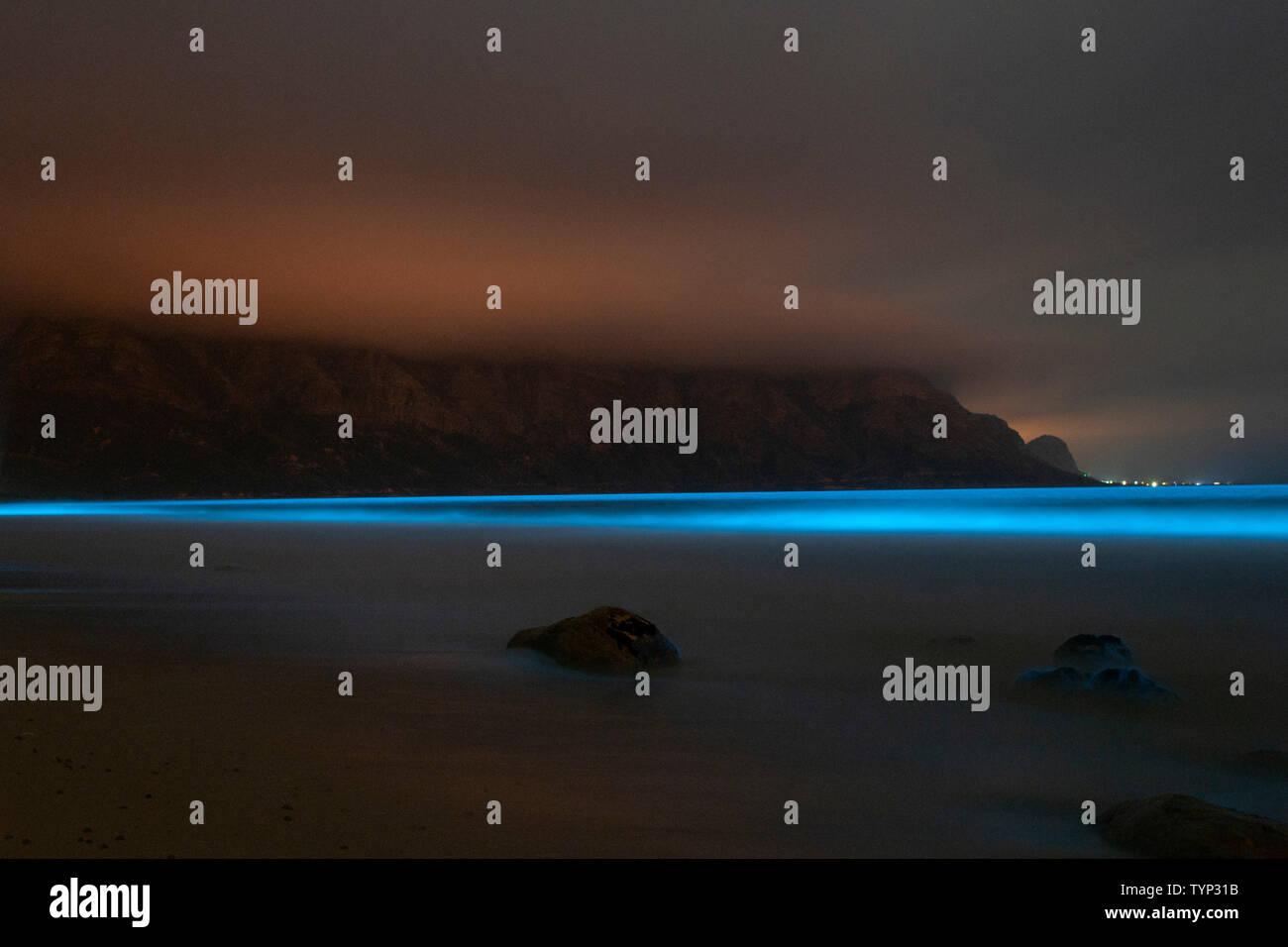Le phytoplancton bioluminescente illuminant le océan le long de la côte, à la réserve de biosphère de Kogelberg près de Cape Town, Afrique du Sud. Banque D'Images