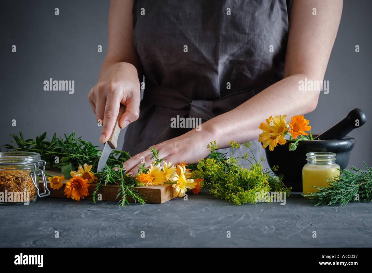 Hacher les herbes médicinales herboriste femme avec un couteau pour préparer les médicaments pour le traitement de guérison. Phytothérapie concept. Banque D'Images