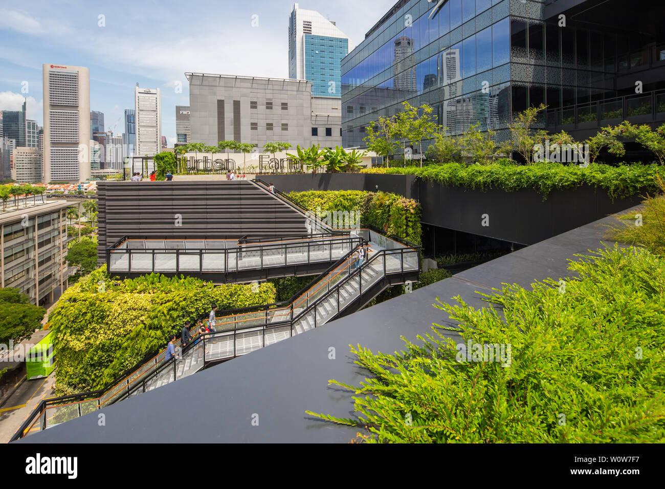 Les gens de monter l'escalier à la ferme urbaine sur le toit de Funan Mall, Singapour Banque D'Images