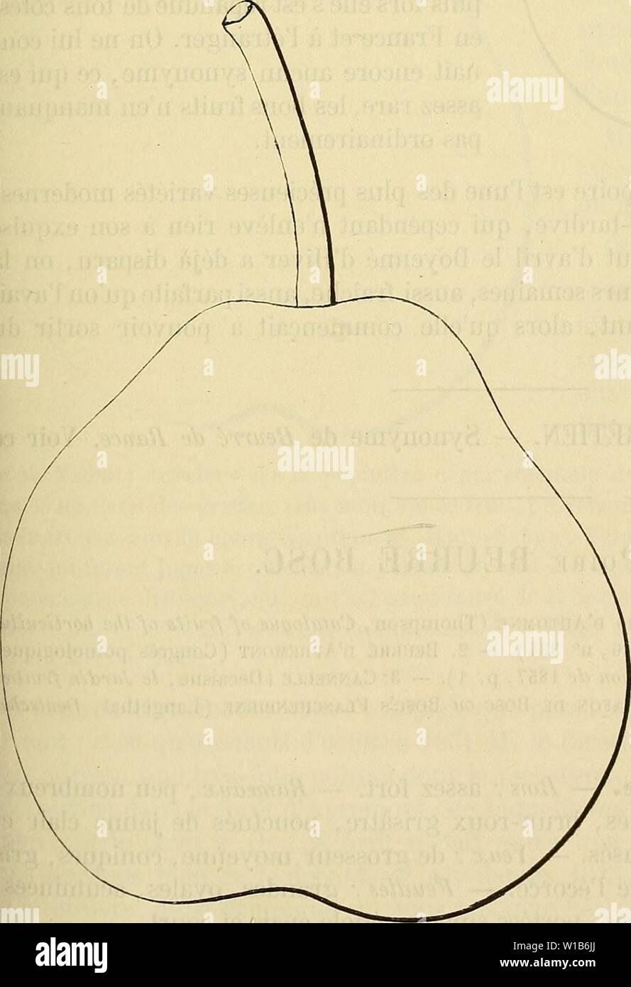 Image d'archive à partir de la page 326 du Dictionnaire de mairie (Kiel) contenant. Dictionnaire de mairie (Kiel): contenant l'histoire, la description, la figure des fruits anciens et des fruits modernes les plus gÃnÃralement . dictionnairedepo cultivÃs connus et001lero Année: 1867 BEU [beurrà bol] 319 Description du fruit. - Grosseur: moyenne. - Forme: turhinÃe, obtus, ventrue. - PÃdoncule: cour, assez gros, arquà charnu, à la base, in part continu avec le fruit, implantà obliquement. - Åii: grands, bien ouvert, TRÀ¨s-dÃveloppÃ, presque saillant. Peau: jaune verdâtre, ponctuÃe striÃe marbrÃe,, de r Photo Stock