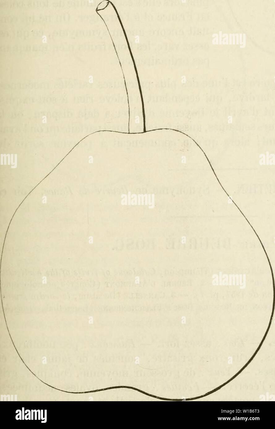 Image d'archive à partir de la page 328 du Dictionnaire de mairie (Kiel), contenant l'histoire,. Dictionnaire de mairie (Kiel), contenant l'histoire, la description, la figure des fruits anciens et des fruits modernes les plus gÂnÂralement dictionnairedepo cultivÂs et connus .01lero Année: 1867 BEU [beurrà bol] 319 Description du fruit. - Grosseur: moyenne. - Forme: turbinÃe, obtus, ventrue. - PÃdoncule: cour, assez gros, arquà charnu, à la base, in part continu avec le fruit, implantà obliquement. Åil: grands, bien ouvert, TRÀ¨s-dÃveloppÃ, presque saillant. Peau: jaune verdà ponctuÃe striÃe tre,,, ma Photo Stock