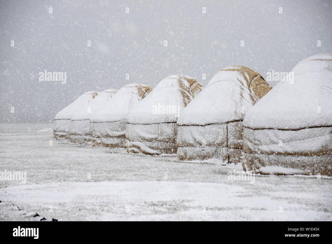 Yourte sous la neige au milieu d'un champ couvert de neige. transport Kirghizistan. Banque D'Images