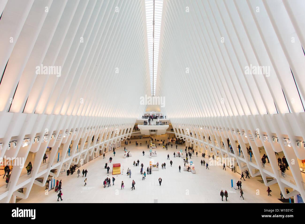 Oculus, World Trade Center Transportation Hub, Financial District, Manhattan, New York City, New York, États-Unis d'Amérique, Amérique du Nord Banque D'Images