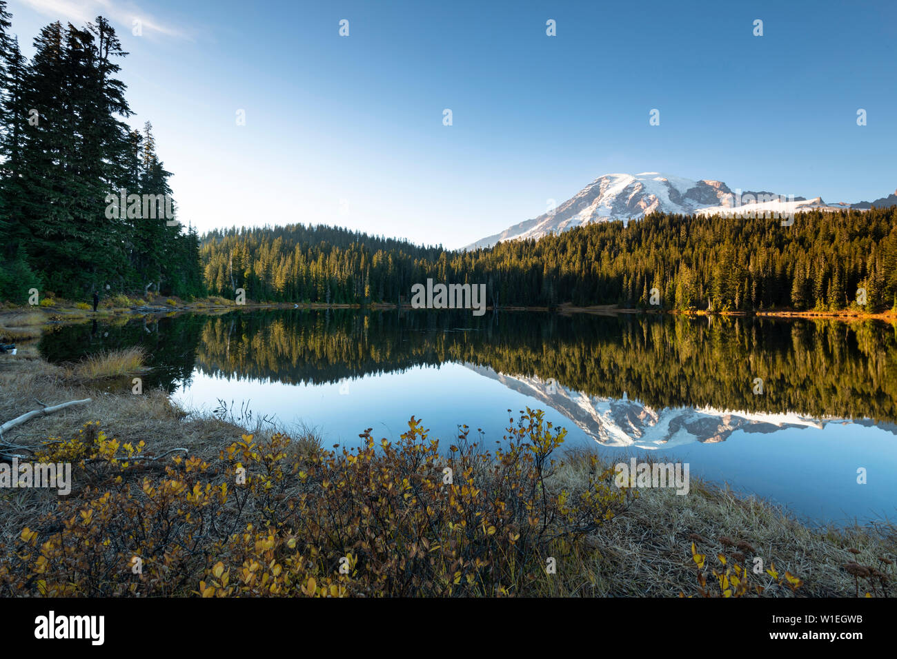 Reflet Lac, Mount Rainier National Park, l'État de Washington, États-Unis d'Amérique, Amérique du Nord Banque D'Images