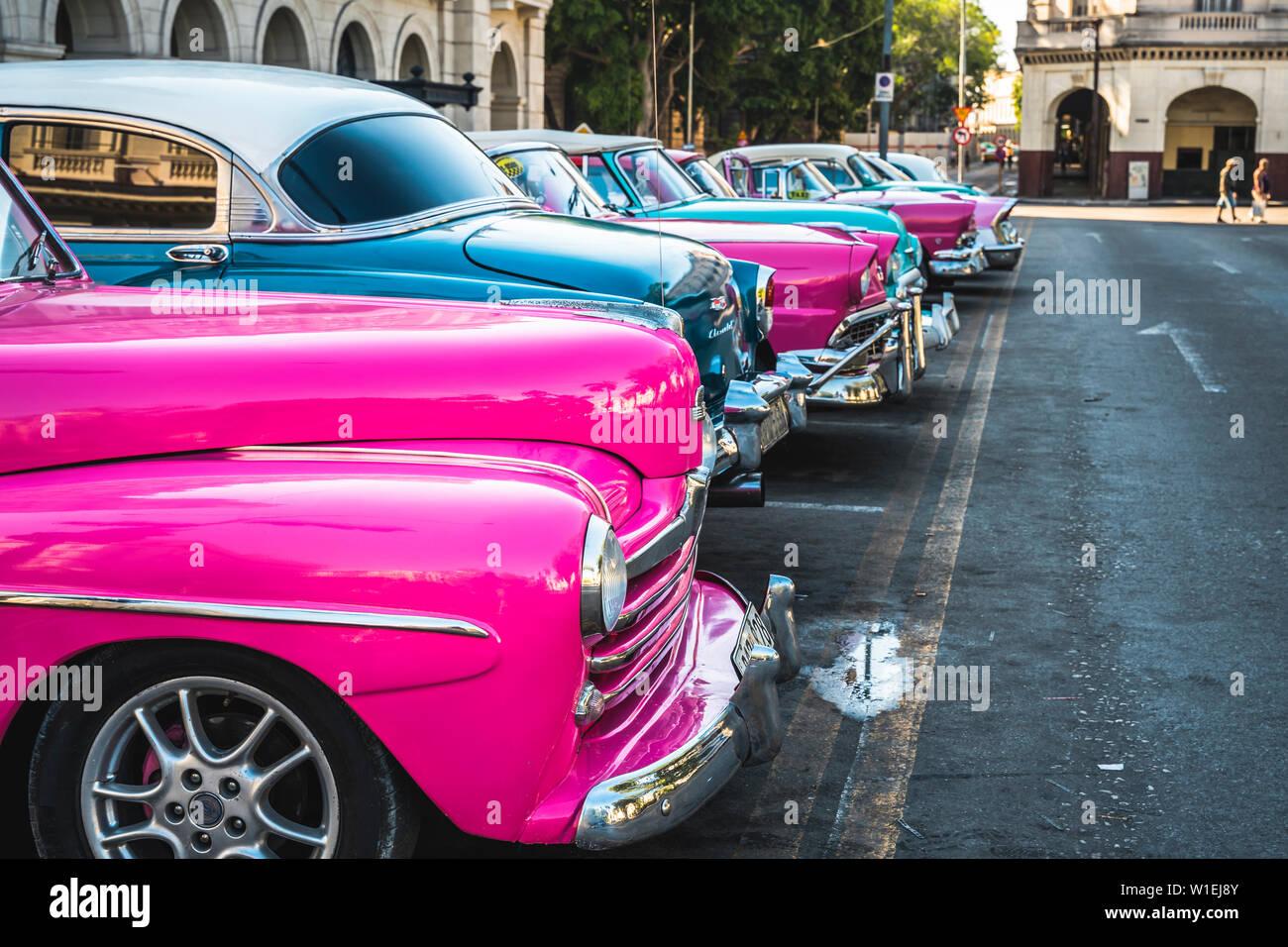 Taxi américain coloré de voitures stationnées à La Havane, La Havane, Cuba (La Havane), Antilles, Caraïbes, Amérique Centrale Banque D'Images