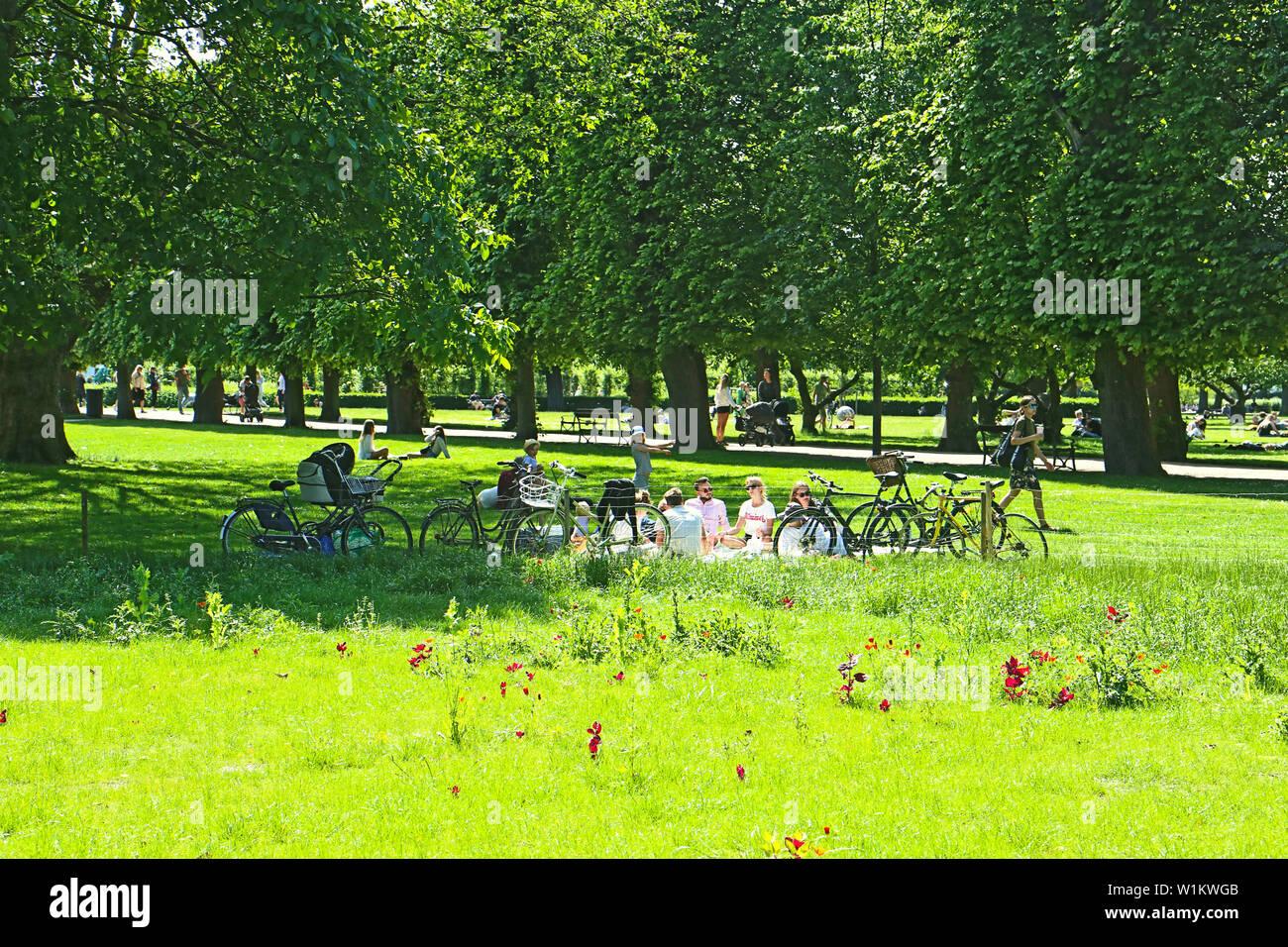 Copenhague, Danemark - 16 juin, 2019 Très belle vue sur le jardin du roi près de Rosenborg Castle dans le centre de Copenhague établi depuis début 17t Banque D'Images
