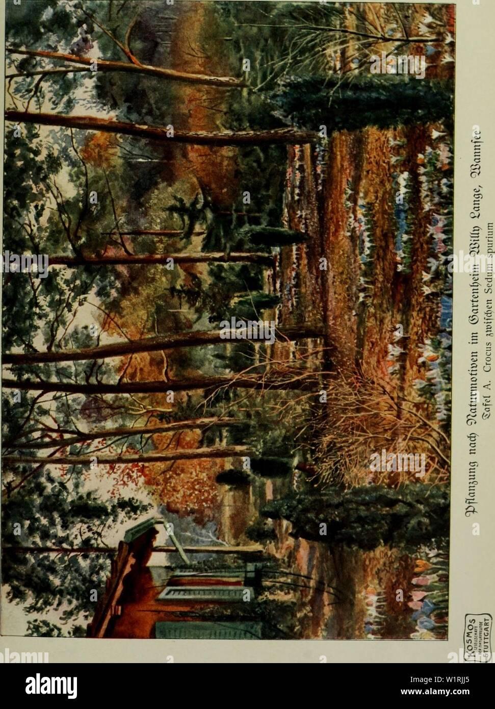 Image d'archive à partir de la page 66 du Das Leben der Pflanze (1906). Das Leben der Pflanze daslebenderpflan07fran Année: 1906 Banque D'Images