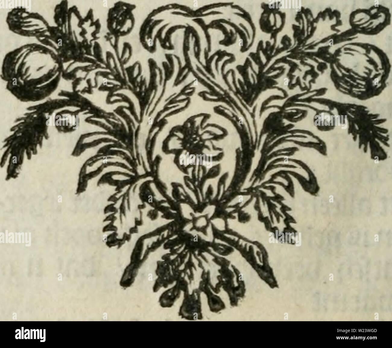 """Image d'archive à partir de la page 185 de De drie t'zamenspraeken Waermondt tusschen. De drie t'zamenspraeken Waermondt Gaergoedt tusschen en plus, de l'op- en ondergang van Floraes bezwaarden la SLA; la flore de zotte bollen, Troost-mémoire, registre en geächte hyacinten der tegenwoordige meest, zelver prysen der rencontré. Verciert in de prent curieuse. Cette tweden vermeerdert druck en van gezuyvert dedrietzamenspra veele fauten00haer Année: 1734 gactom teöen 17 rencontré gp u te cecfjt berfïoo toe öe?oo / tocDct gclych fal icii Doen iel"""" jifêft ijcb U002 mê bol gctocnfcljten toeec luft uto bolle lufr/ toefen biijüc gch Di Photo Stock"""