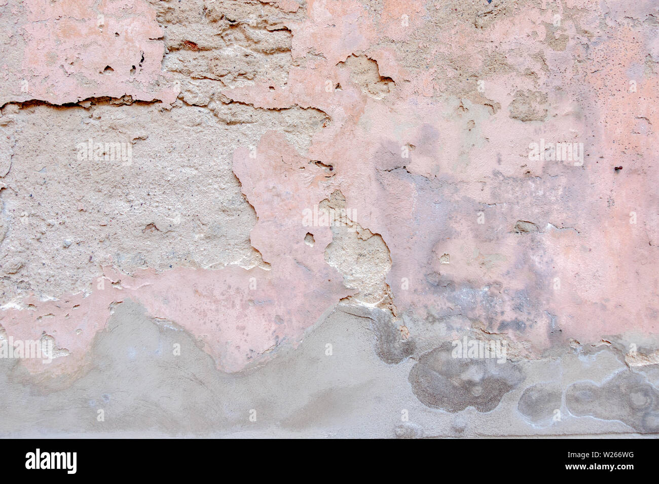 Old Weathered Painted Wall Background Texture Gris Blanc